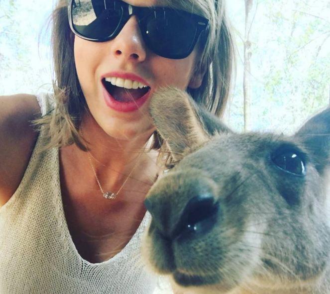 I really hope Swift's mobile game includes kangaroo selfies