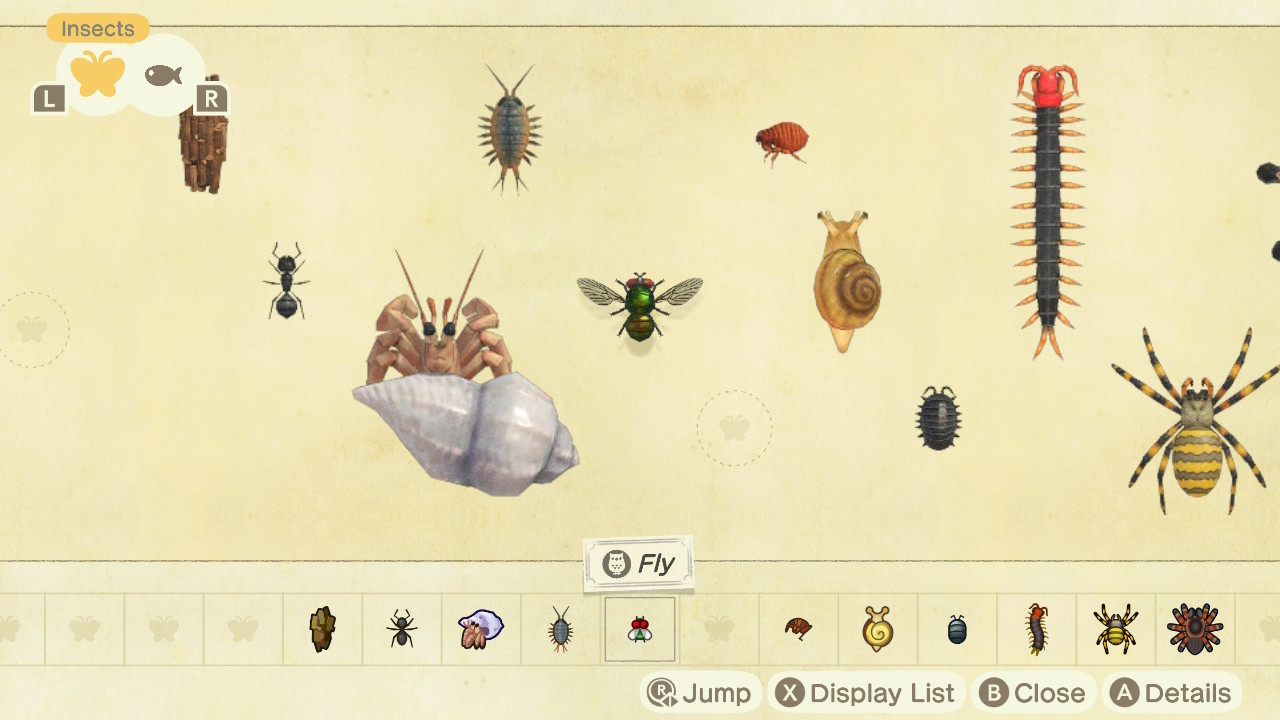 A fly in Animal Crossing: New Horizons' Critterpedia.