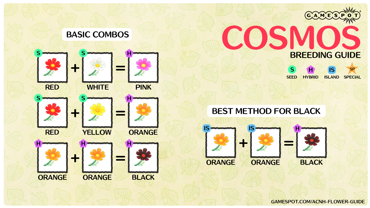 A chart showing how to breed every color of cosmos in New Horizons.