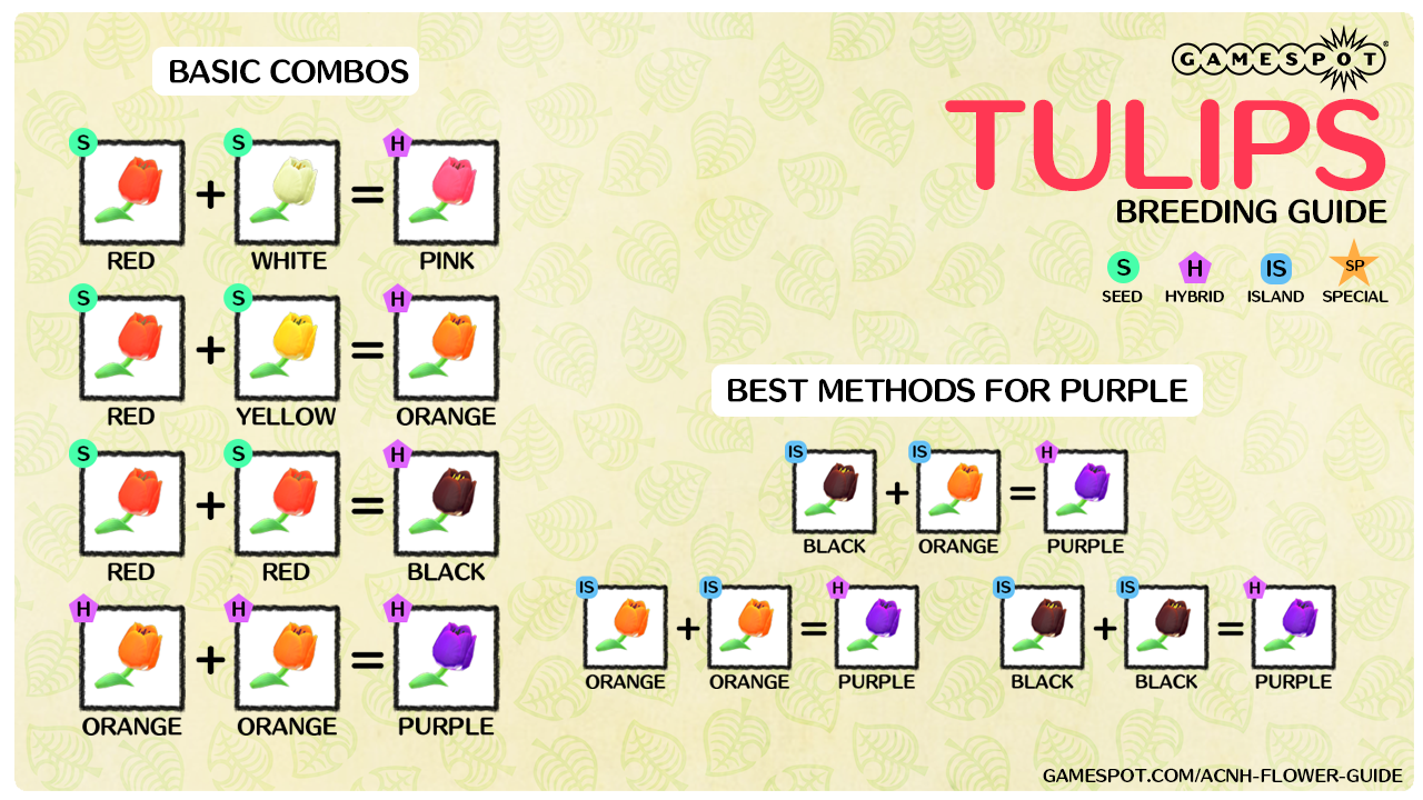 A chart showing how to breed every color of tulips in New Horizons.