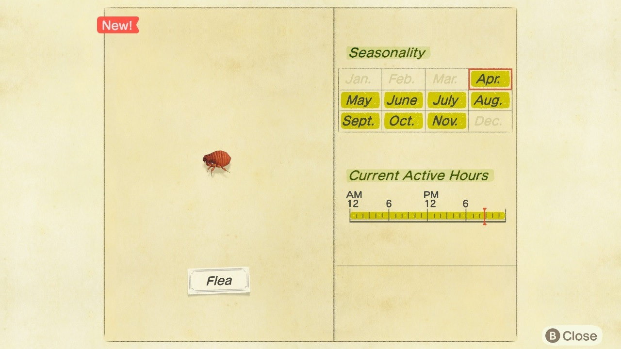 A flea in Animal Crossing: New Horizons.