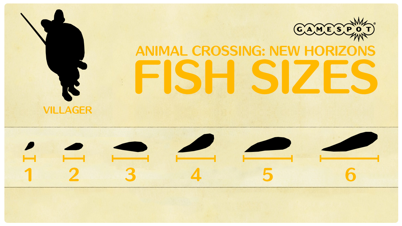 All the fish sizes in Animal Crossing: New Horizons.