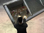 Max Payne is filled with memorable moments.