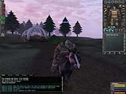 You can travel quickly from town to town on horseback.