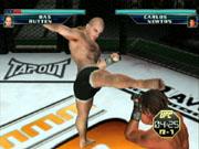 Mixed martial arts mayhem finally comes to the GameCube.
