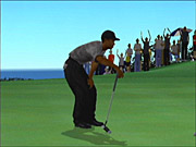 The game starts off with a helpful tutorial that explains the game's now-standard analog swing system.