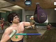 The boxing mechanics and overall control found in Rocky were obviously well thought out...