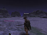 Final Fantasy XI may be a port of an online RPG for consoles, but it offers even more depth and content, and better looks, than most of its competition.