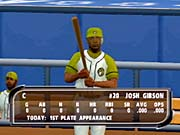 In addition to the 30 standard teams, there are 24 bonus teams to unlock. One such team is composed entirely of superstars from the Negro Leagues.