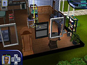 You'll need to keep your sims happy, and you'll want to keep buying new stuff for your house.
