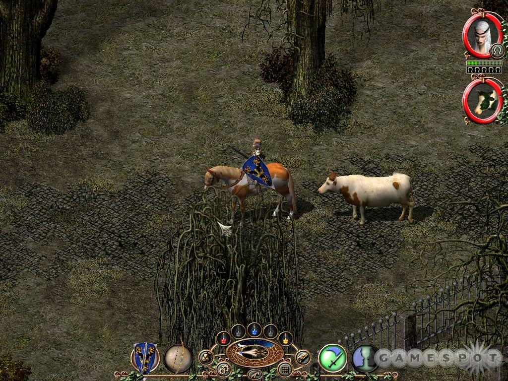No cow level, but Sacred's detailed world features a good selection of ambient wildlife.