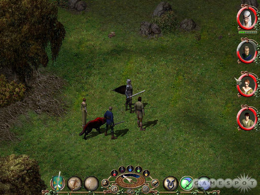 While you control a single character, you can accumulate quite an entourage of companions while solving quests.