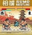See screenshots of Sumo Wrestling