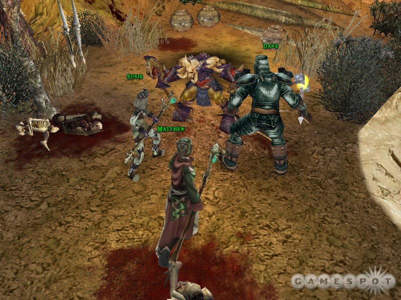 Yes, you can control a party within a party in Dungeon Siege II's multiplayer.