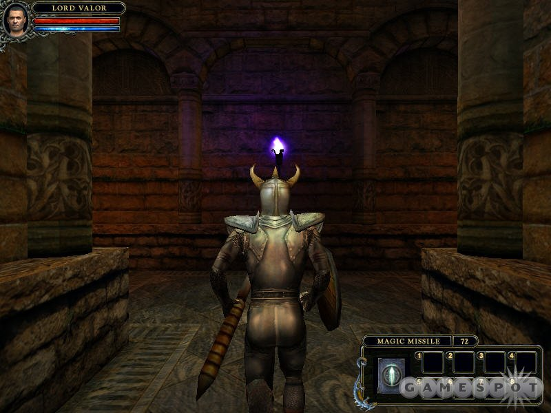 The game takes place in third person, so you can admire your character's form-fitting armor.