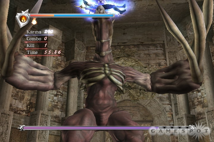 The action in Ninja Gaiden is very intense and has a great, fluid feel to it.
