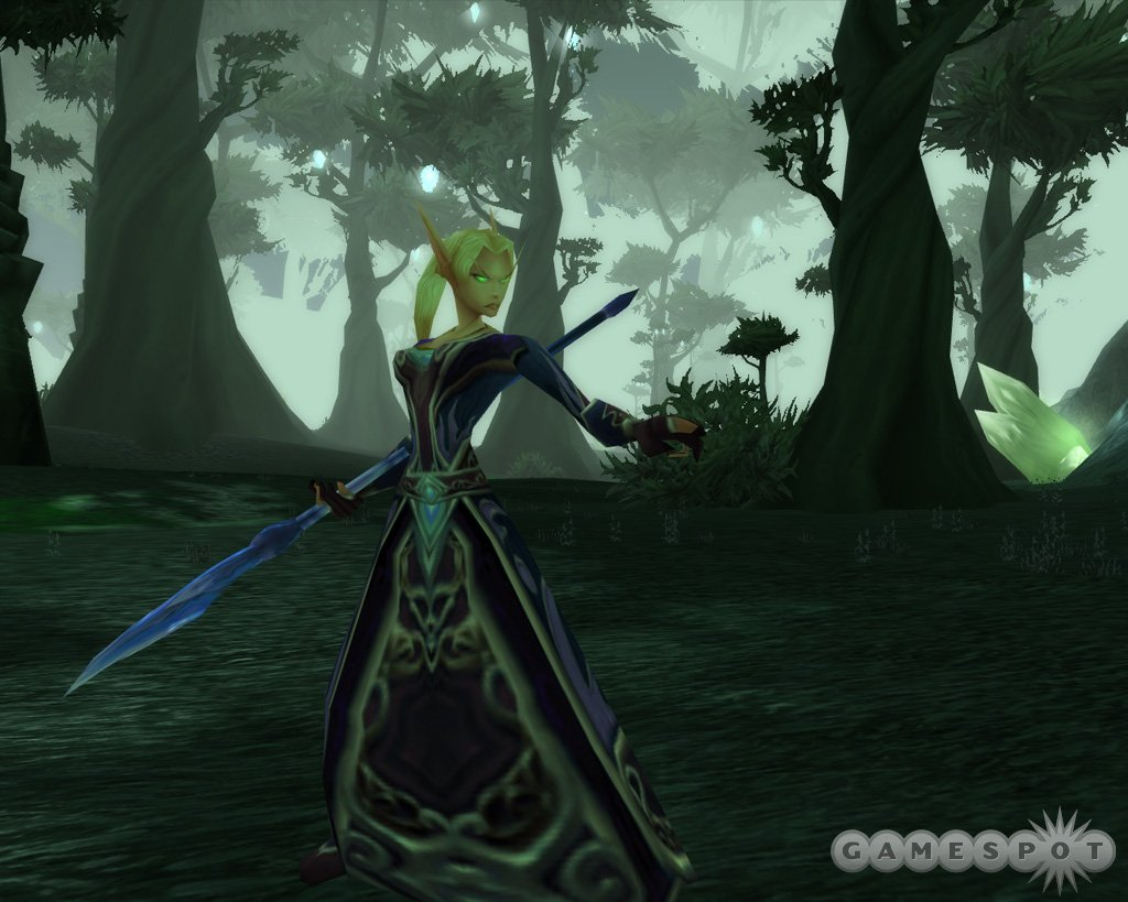 This is a blood elf mage in the Terokkar forests. The blood elves are one of the two new races in the expansion.