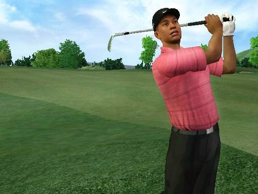 Can you swing like Tiger?