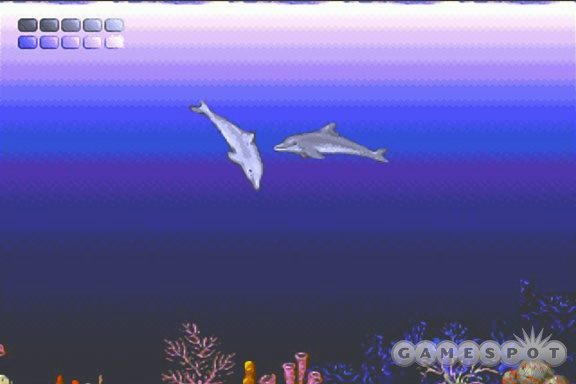 Ecco can do the things a real life dolphin can, including leaping out of the water and talking to other dolphins