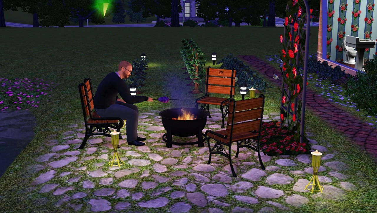 Tired of marshmallows? You could always try roasting grapes!