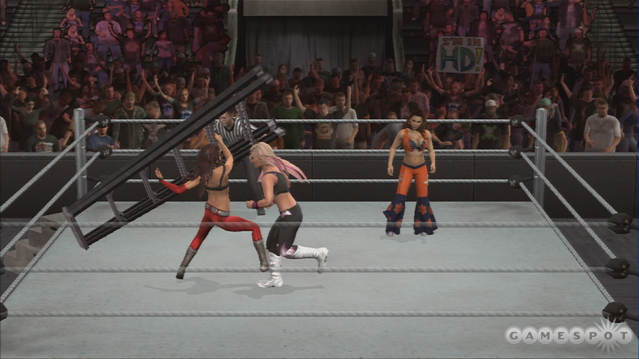 Ladder-wielding is one of the many skills required of WWE divas.