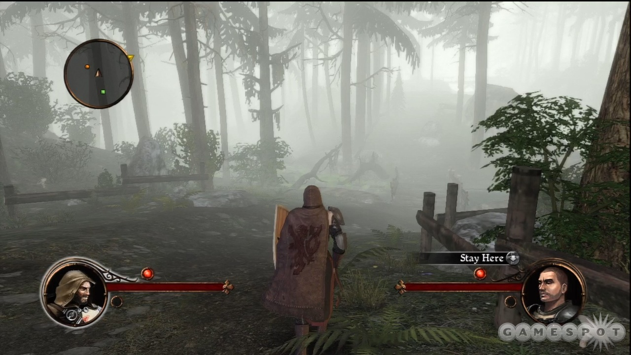 A foggy forest means there's monsters afoot.