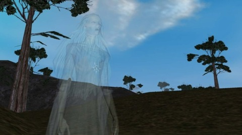 It doesn't help the visually impaired that some of EverQuest II's characters are actually invisible.