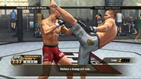 UFC 2010 Undisputed sales weren't as hard-hitting as expected.