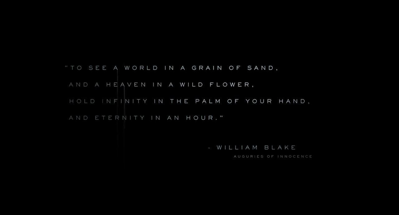 The Opening Screen: A Blake Poem