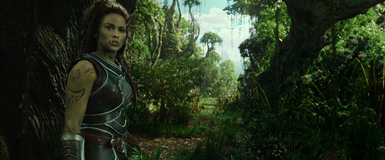 17. Warcraft