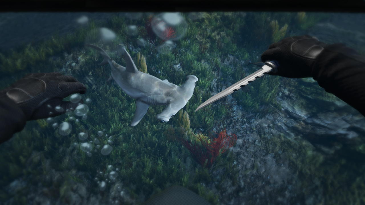 Punch Sharks and Find Treasure