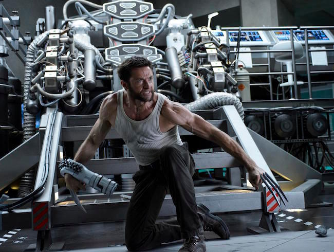 33. The Wolverine