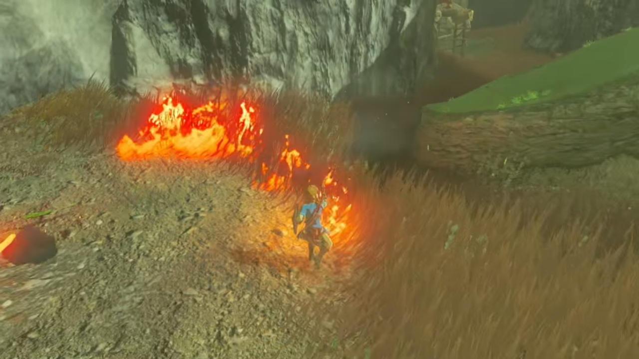 Light Bushes or Tall Grass on Fire