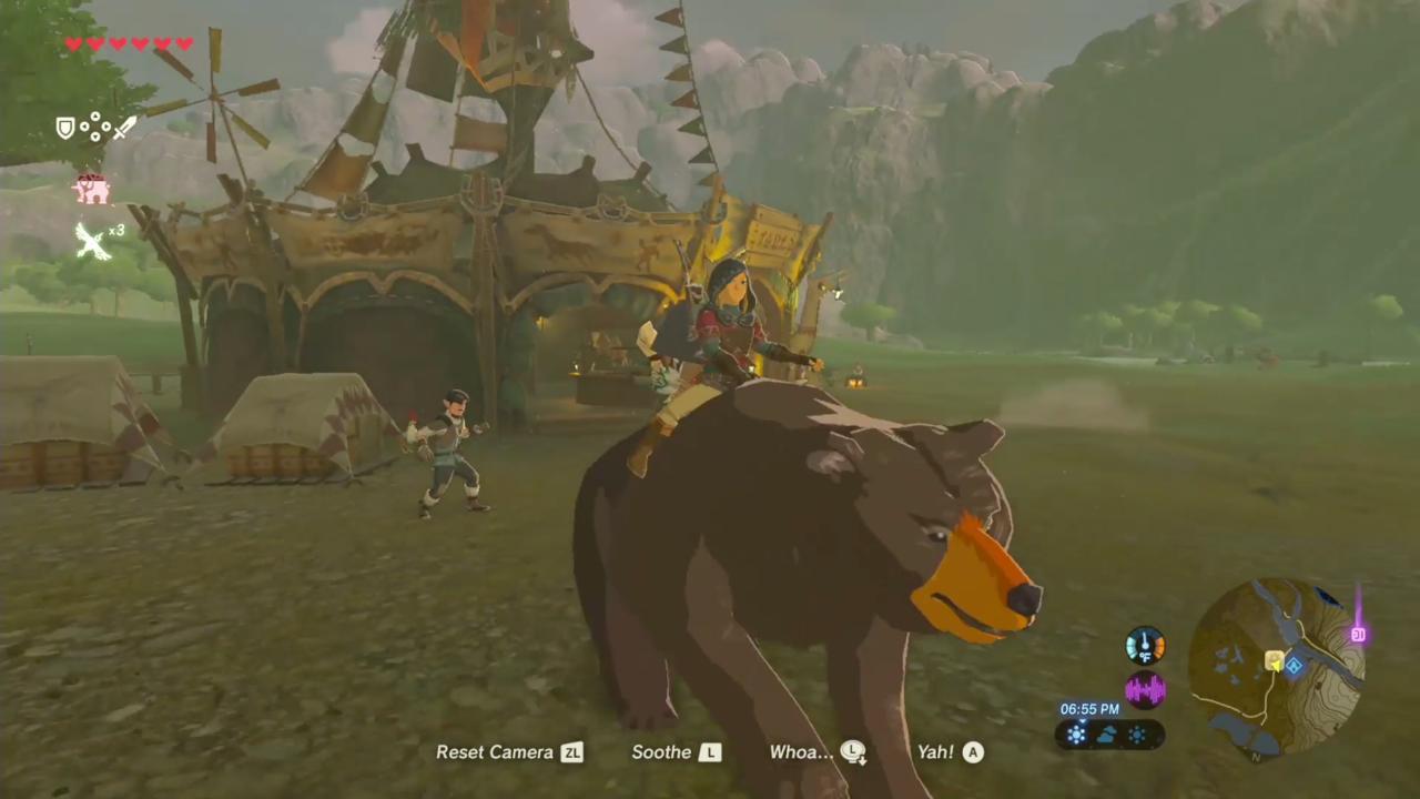Riding Wild Animals