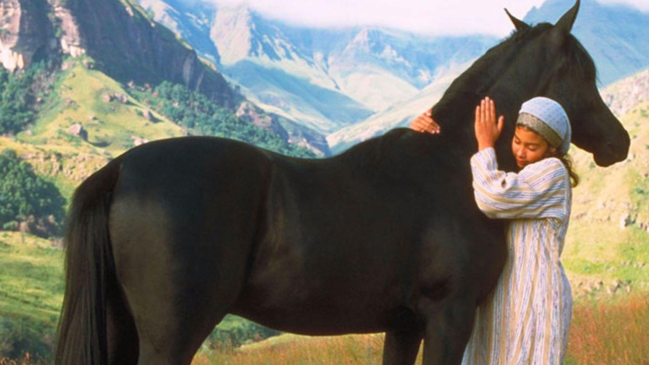 6. The Young Black Stallion (2004)