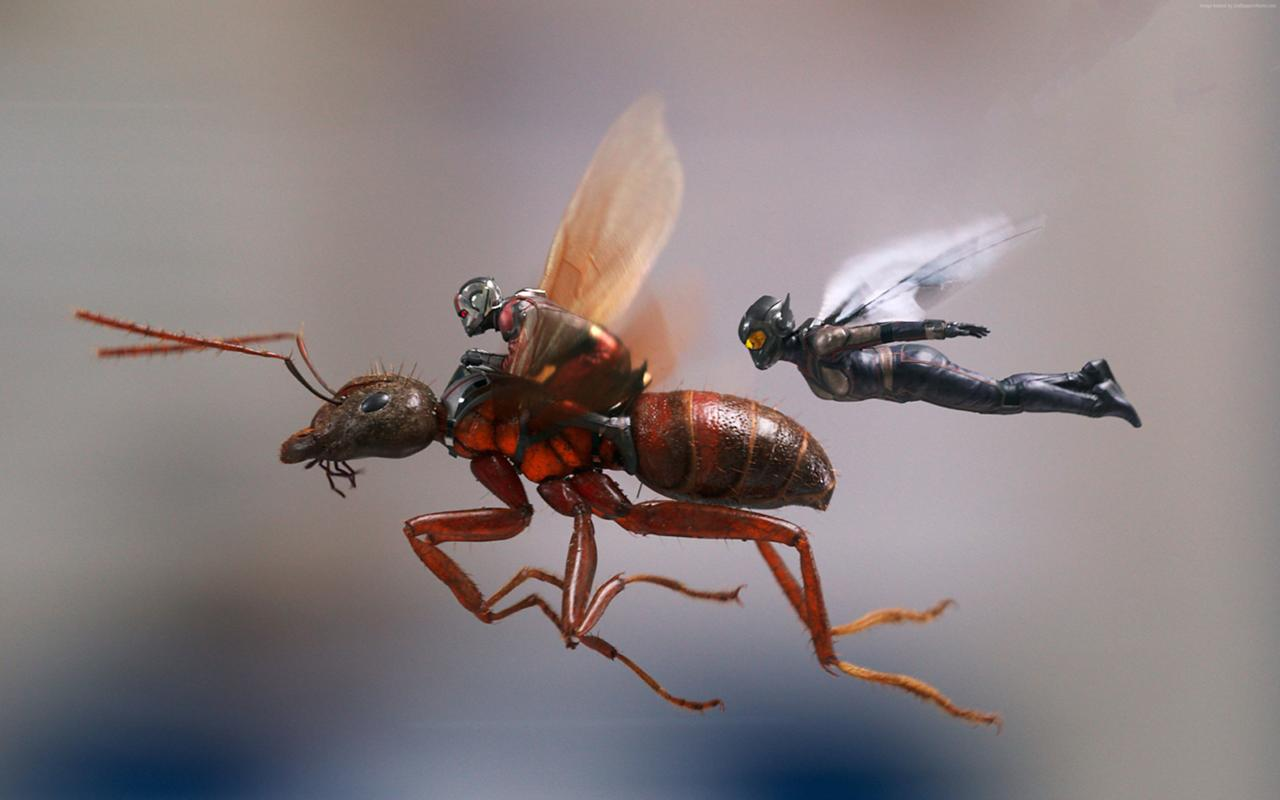 15. Ant-Man and the Wasp (tie)