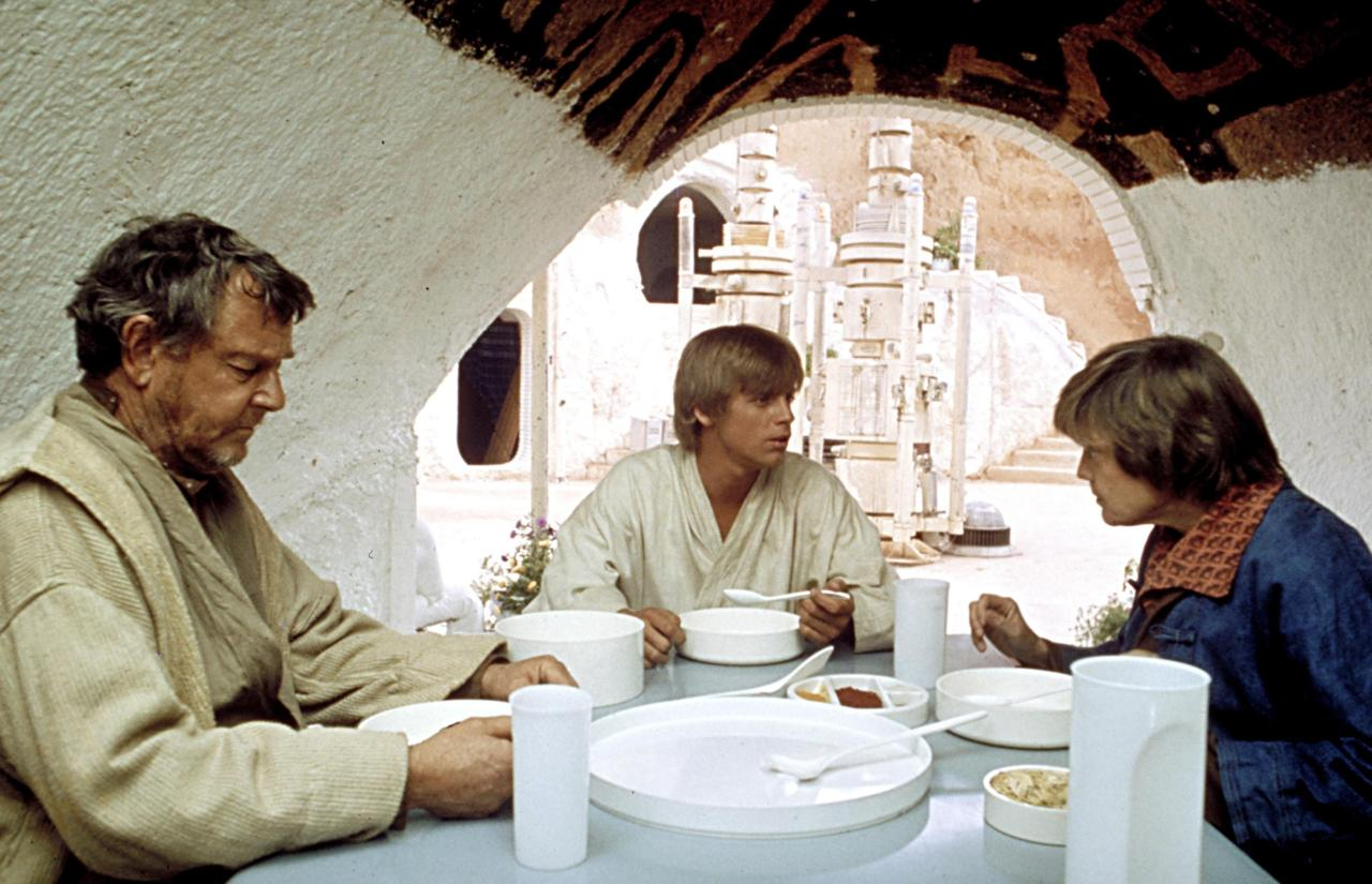 We'll start with a few easy ones. (We promise: They get way harder.) What were Luke's aunt and uncle's job on Tatooine?
