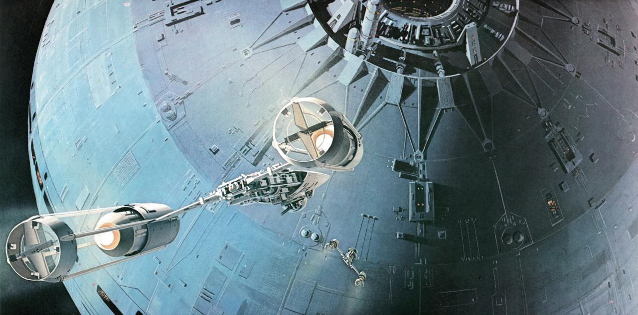 Which species stole the plans to the Death Star?