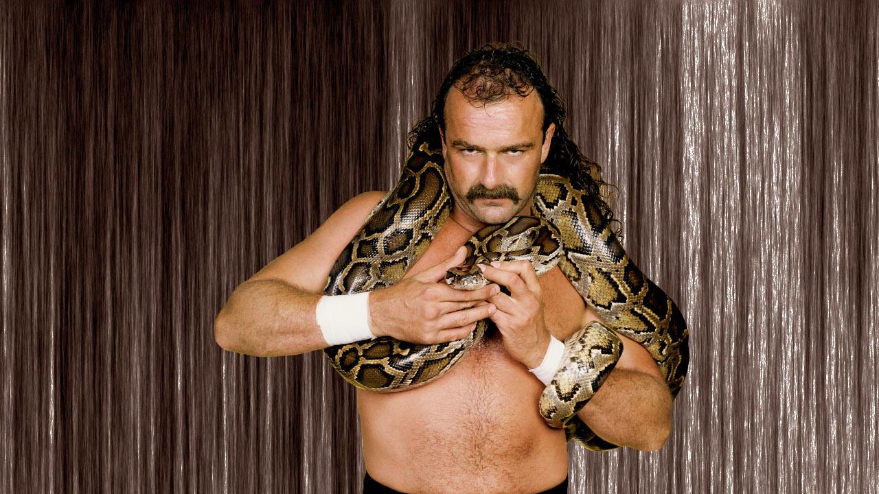 "Jake ""The Snake"" Roberts (Legend)"