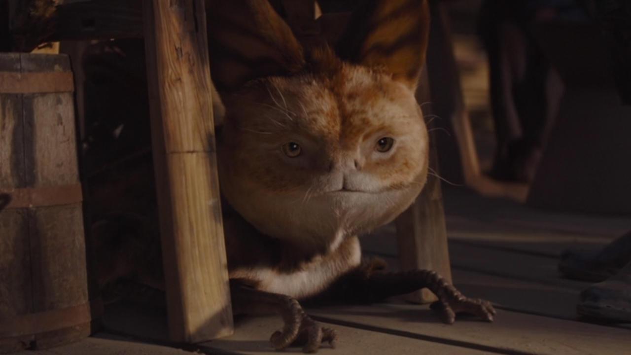 6. Dead god, it's a Loth-Cat