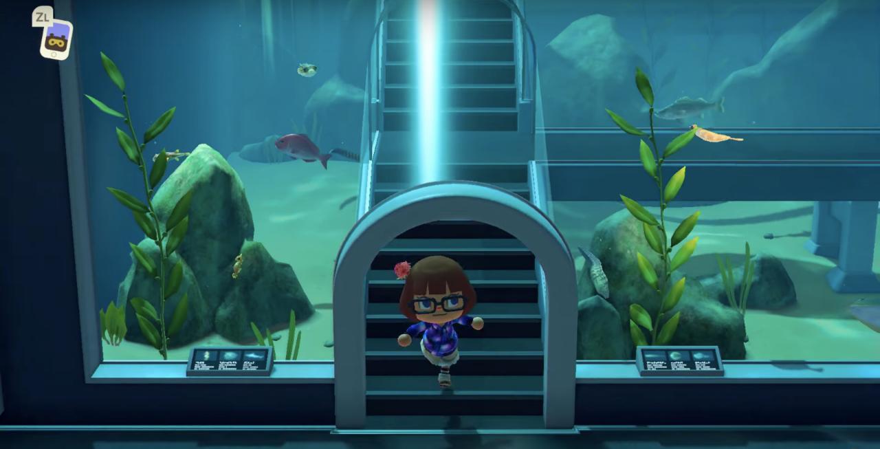 The blue hues of the aquarium are quite comforting.