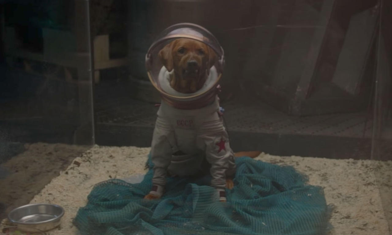 A: Cosmo the Spacedog