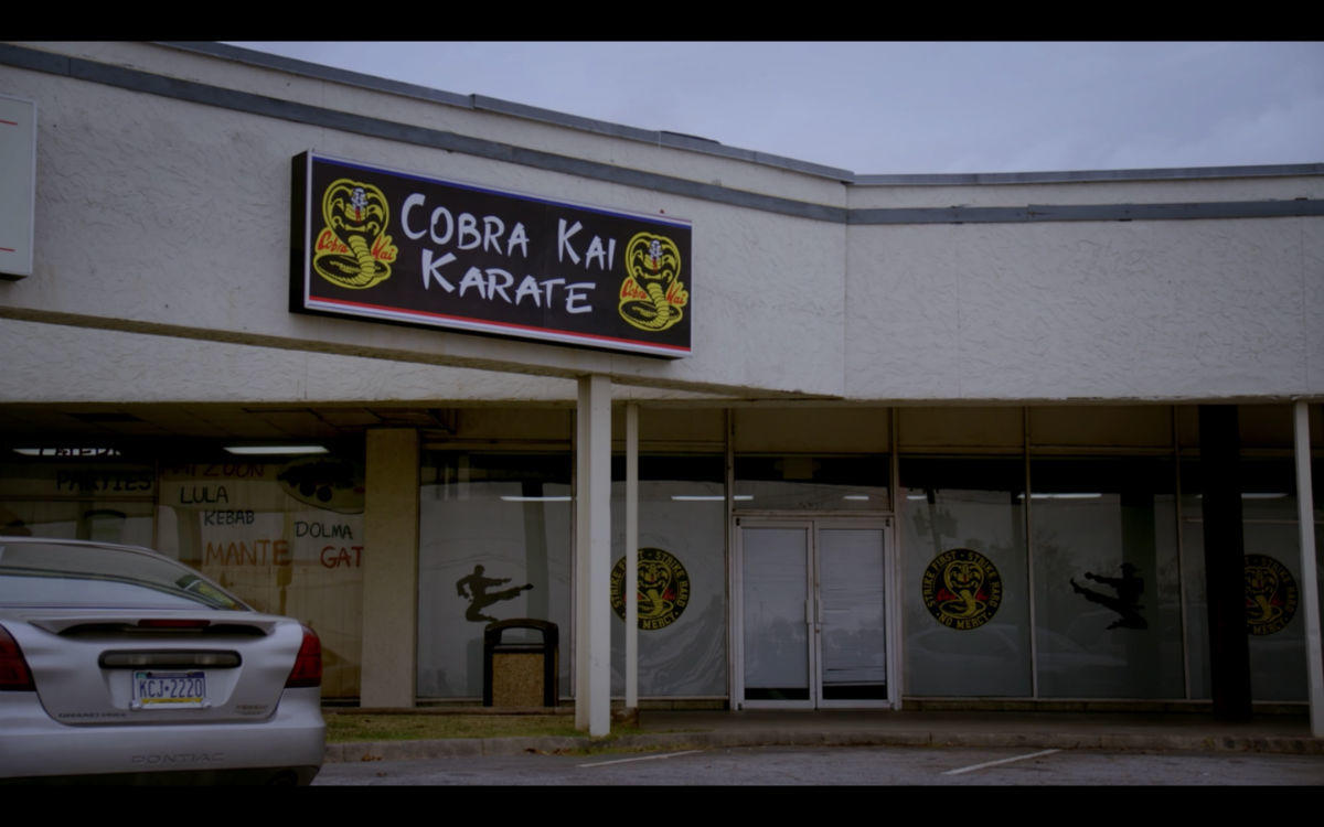 6. Cobra Kai is back