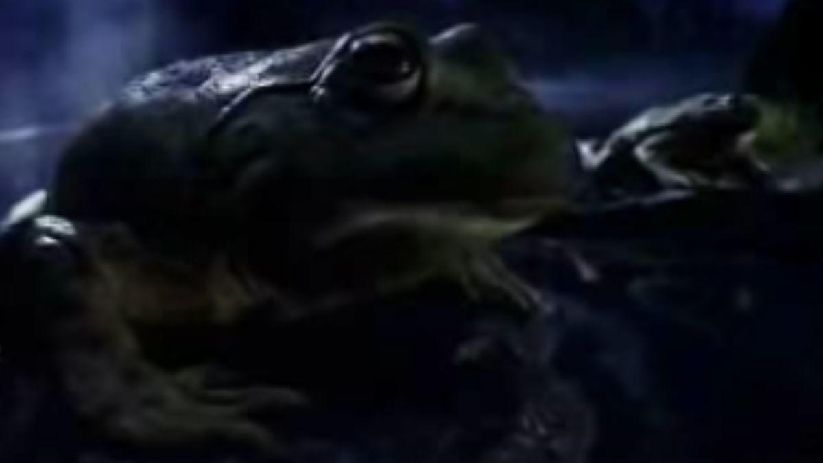 BEST: The Budweiser frogs (1995)