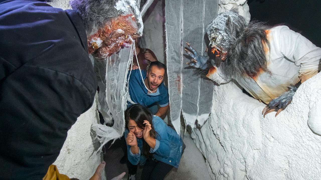 9. Universal Monsters: Frankenstein Meets the Wolf Man