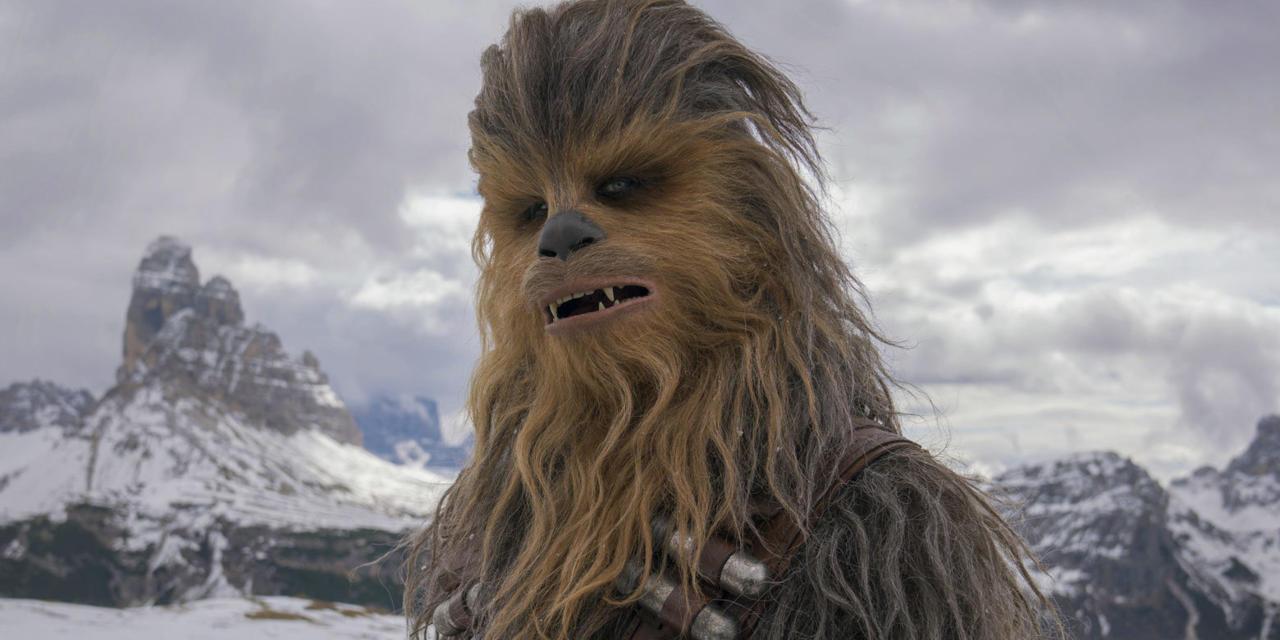 13. Chewbacca