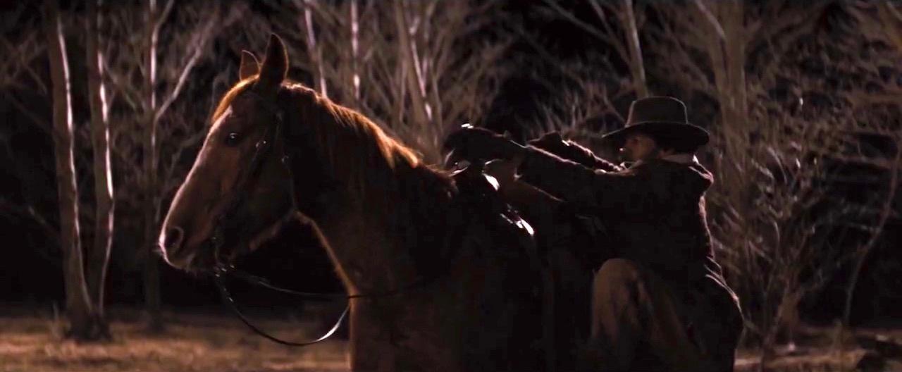 4. Cheetah The Horse