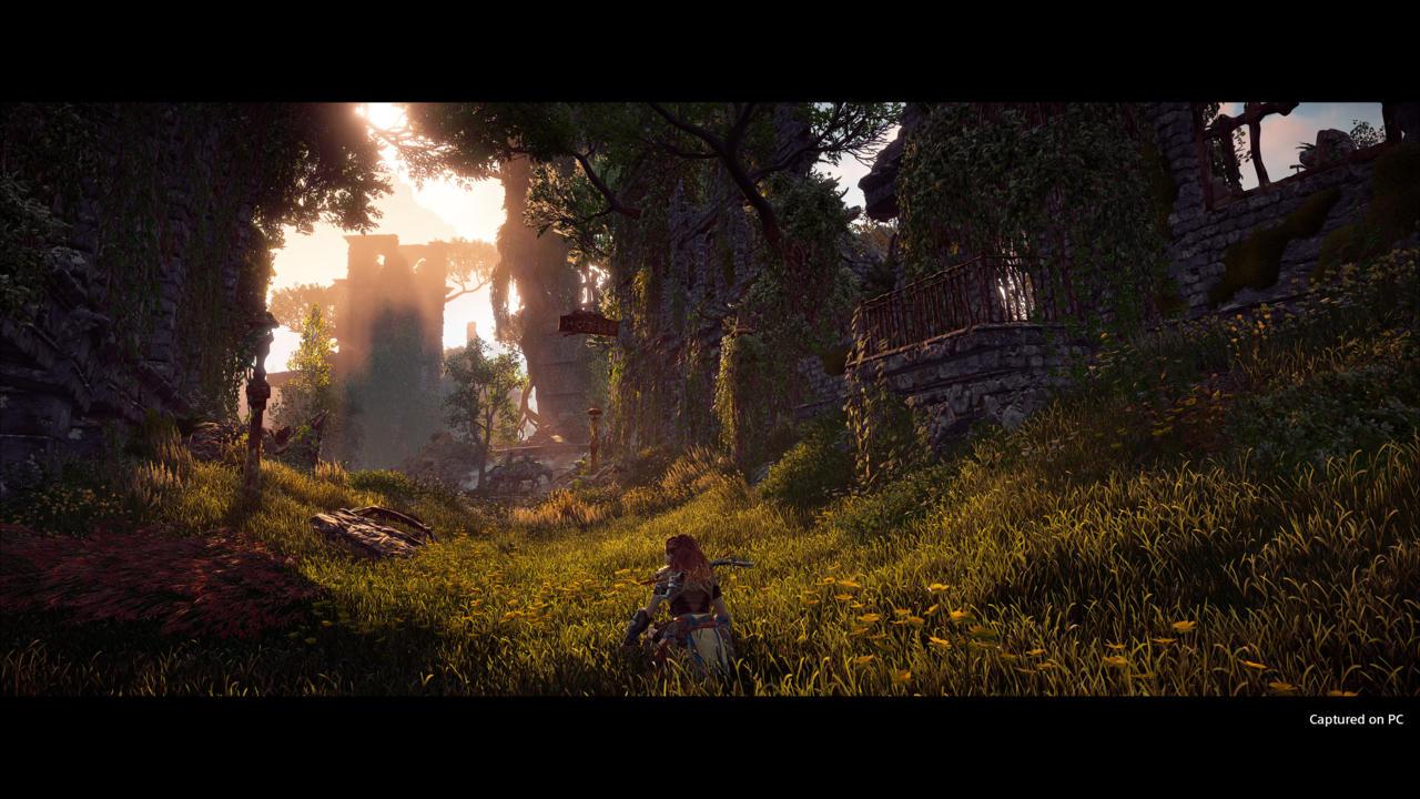Horizon Zero Dawn on PC