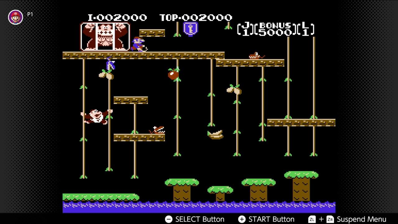 Donkey Kong Jr. (NES)
