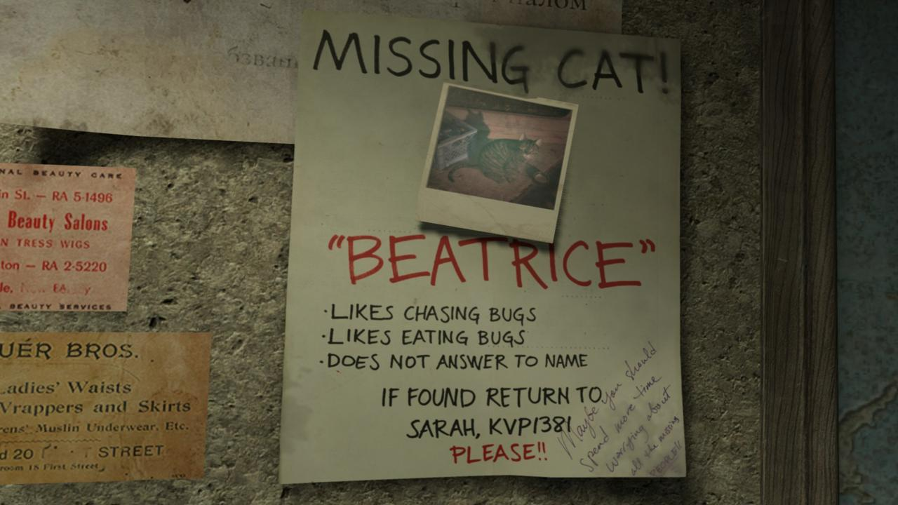 Missing cat poster in a City 17 laundromat.